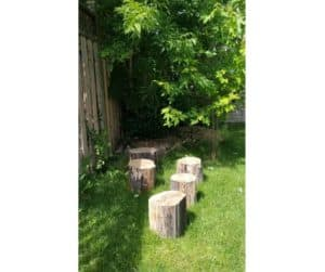 tree stumps for toddler to walk across